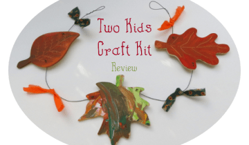 Two Kids Craft Kit