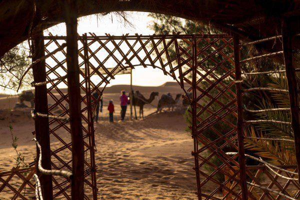deserto do sahara_-15