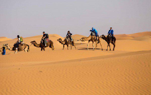 deserto do sahara_-18
