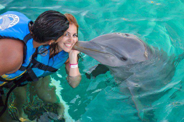 nadar com golfinho_-20