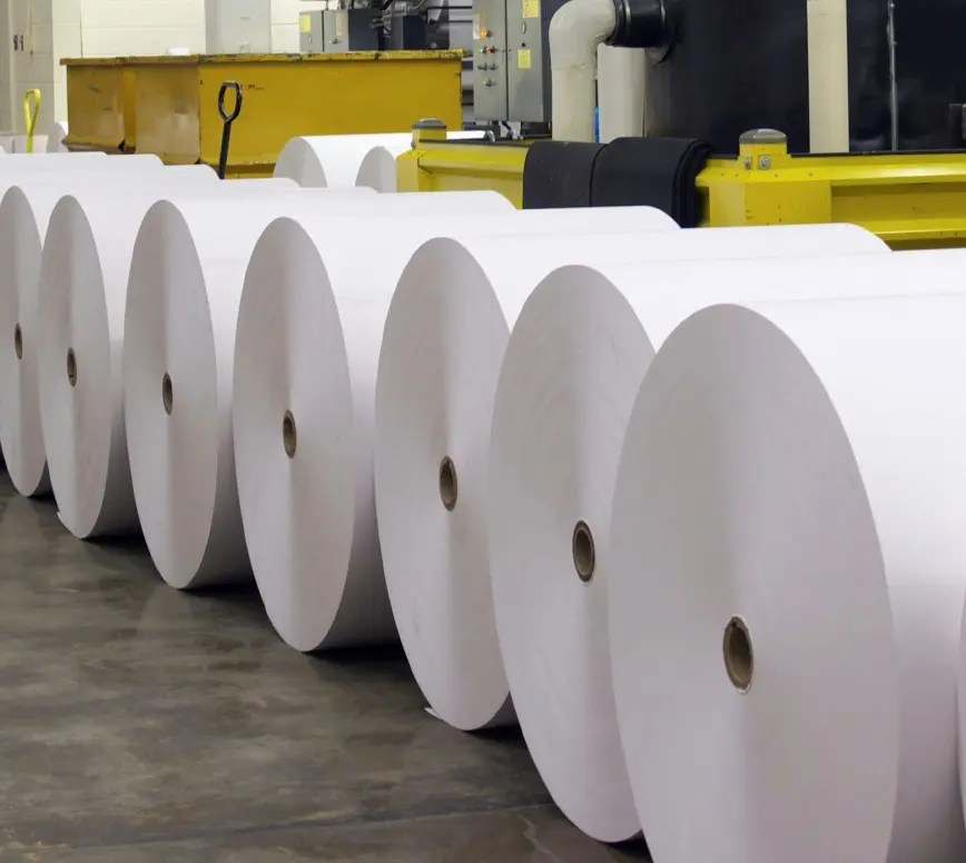 What You Need to Know About Tyvek Paper Rolls - Doranix