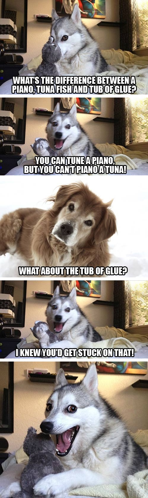 Medium Of Joke Dog Meme