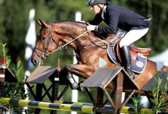Cicogne impegnatissime a portare bimbi alle famiglie equestri