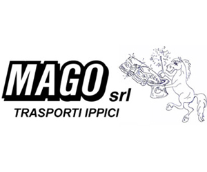 Box 300×250 Sponsor Vari