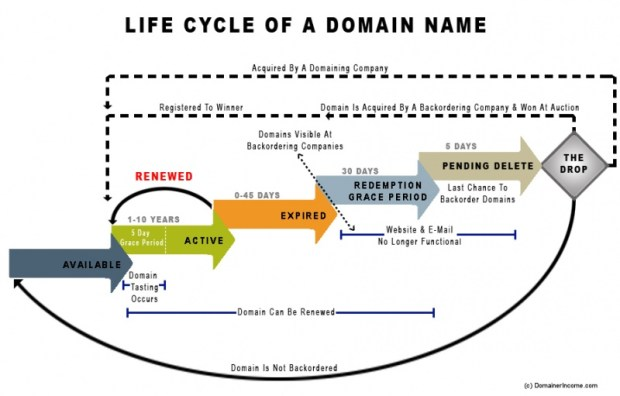 Expired Domains Life Cycle