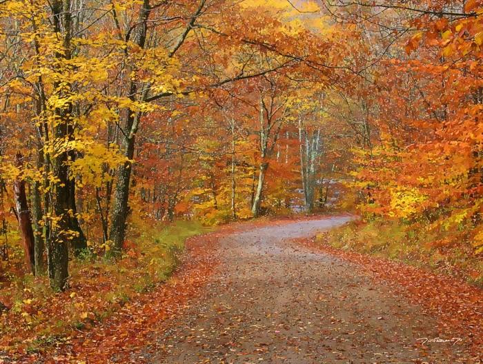 Fall Smoky Mountains Wallpaper Fall Road Doug Mcfarland Studio