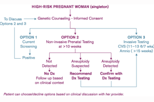 Verinata's Prenatal Testing Flow Chart: Unethical?