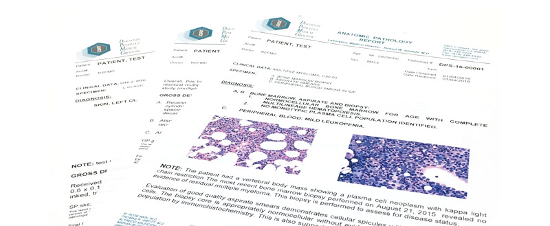 Sample Reports - sample reports