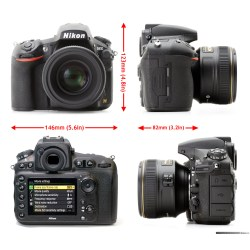 Small Crop Of Nikon D800 Vs D810