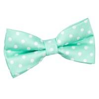 Men's Polka Dot Mint Green Bow Tie