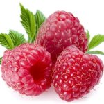 Dr. Oz Raspberry Ketones, Miracle In A Bottle