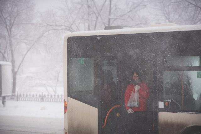 Iarna în București - Primele fotografii 27