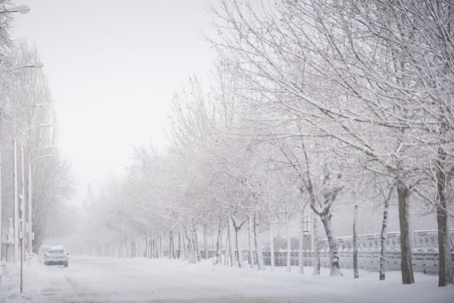 Iarna în București - Primele fotografii 31