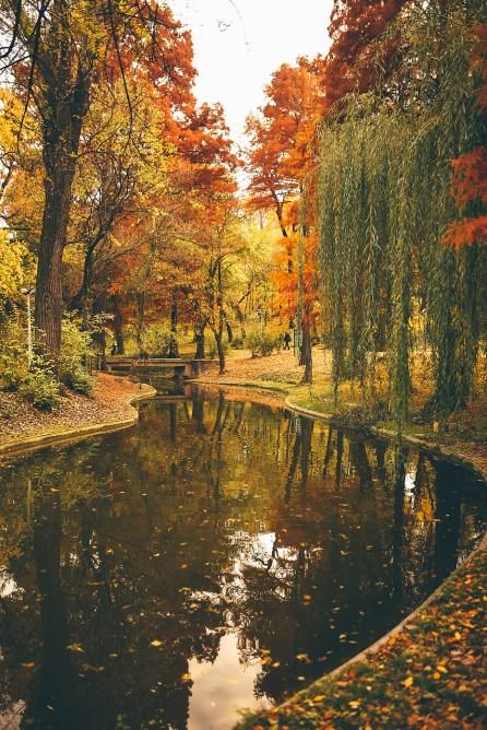 Toamna în București - Parcul Carol I, 6 Nov 2016