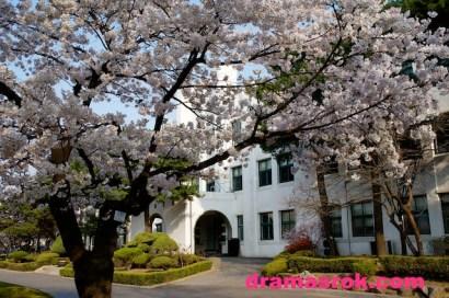 jeongdok library