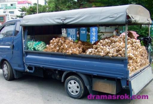 garlic-truck