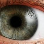 Eye-Reference (2)