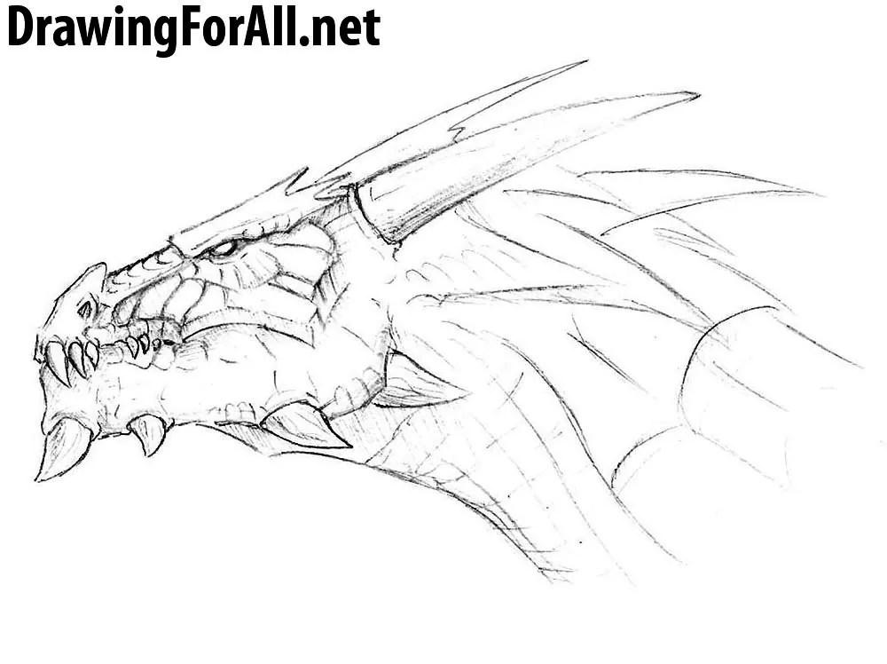 How to Draw a Dragon Head Drawingforallnet