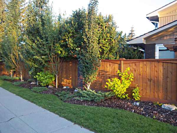 Landscaping Borders Edging