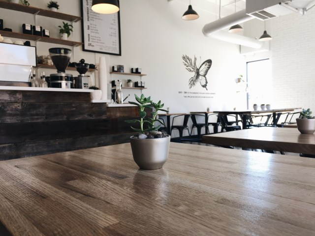 SONDER Coffee & Tea in Denver, Colorado