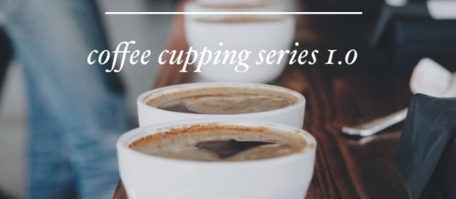 SONDER Day In The Life: Coffee Cupping