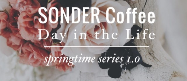 SONDER Day In The Life: Springtime Series