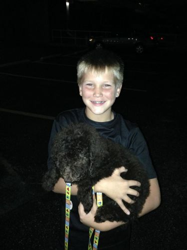 This little boy could not be happier... this was meant to be HIS first puppy.
