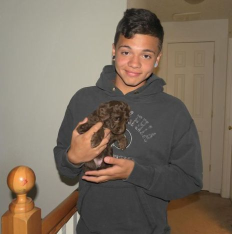 Our Son Connor and a Mini Aussiedoodle puppy