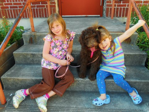 Clementine on of our F1B Labradoodle guardian puppies and her little girls