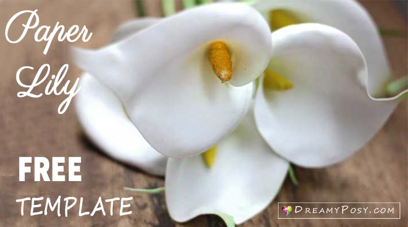 How to make paper Calla Lily flower, FREE template