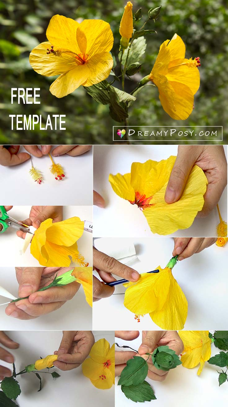 paper hibiscus flower template