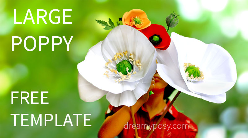 Large paper Poppy flower, FREE tutorial and template - flower template