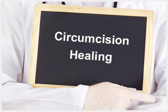 Circumcision Healing