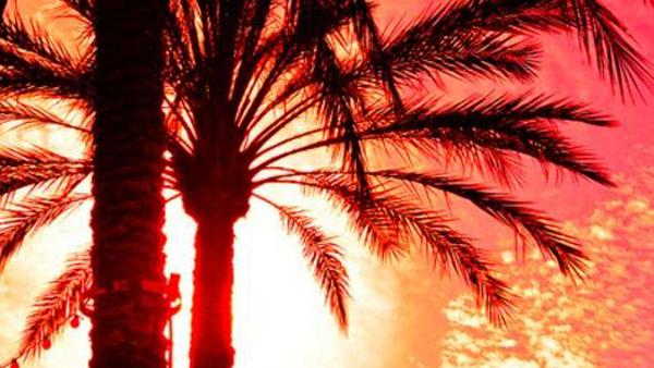 tropical_sunset01