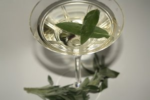 jalisco daisy 300x199 Three Tequila + Sage Cocktails