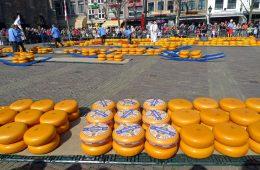 Cheese Market in Alkmaar, Netherlands