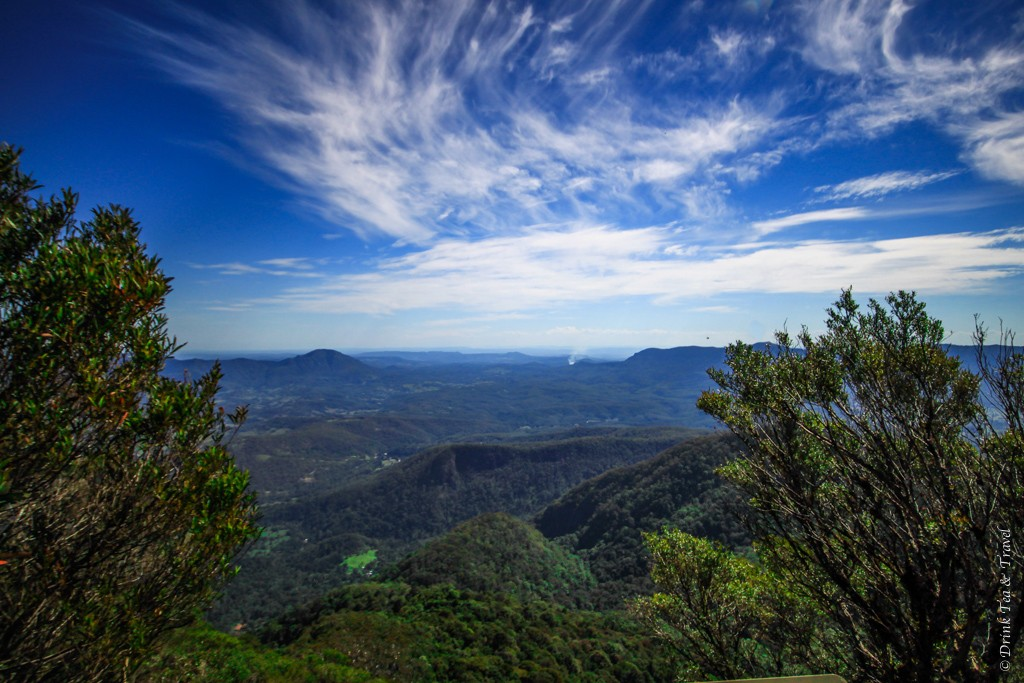 Stunning views from the top. Mt. Warning, Queensland, Australia