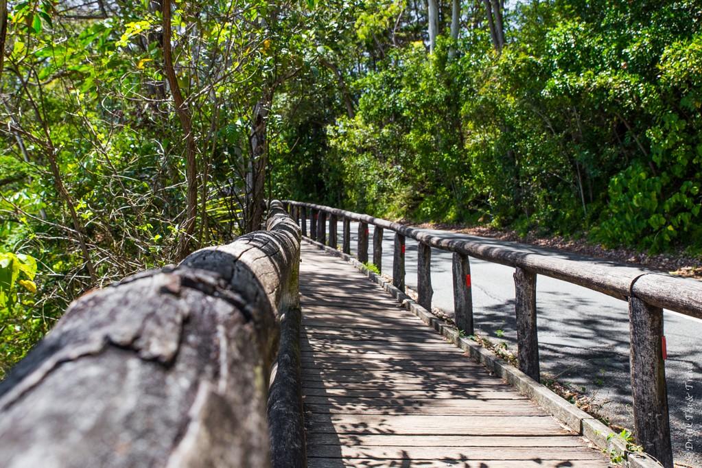 Start of the Coastal Walk in Noosa National Park