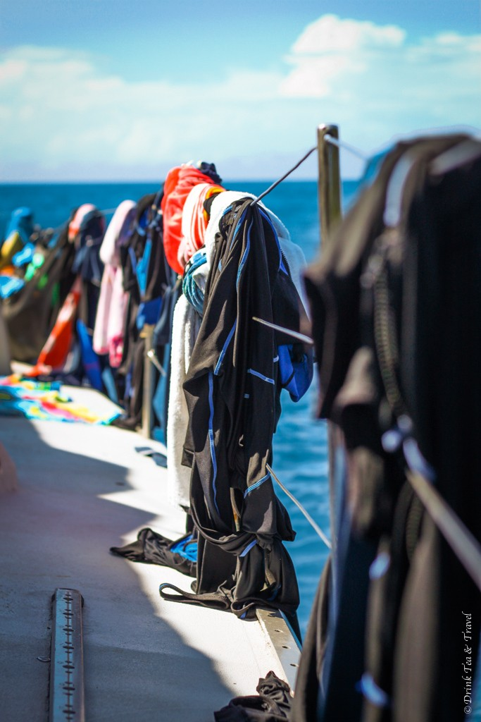 Wet suits drying in the sun after a long day . Sailing Whitsundays. Australia