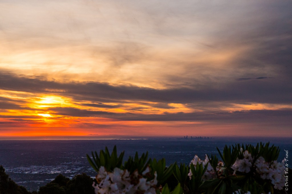 Sun setting over Melbourne. View from Mt Dandenong