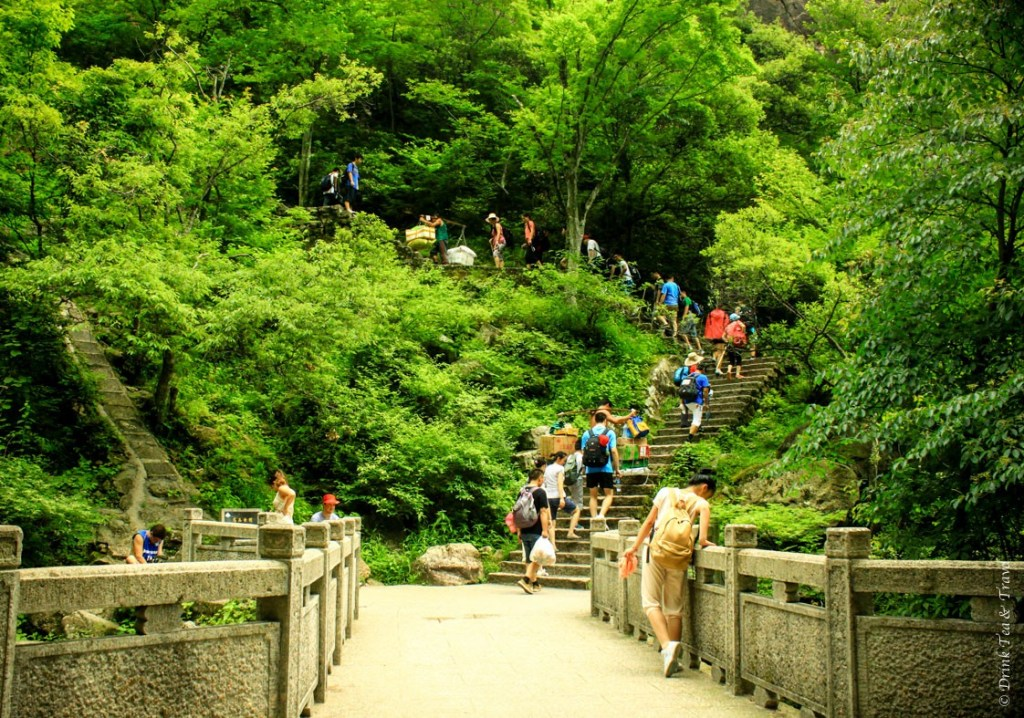 It's a tough climb up to Huangshan, but many Chinese still preferred it to waiting in the cable car line for 2 hours