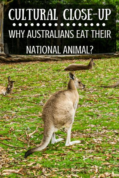 Tourist trap or reality? Do Australians really eat kangaroo?