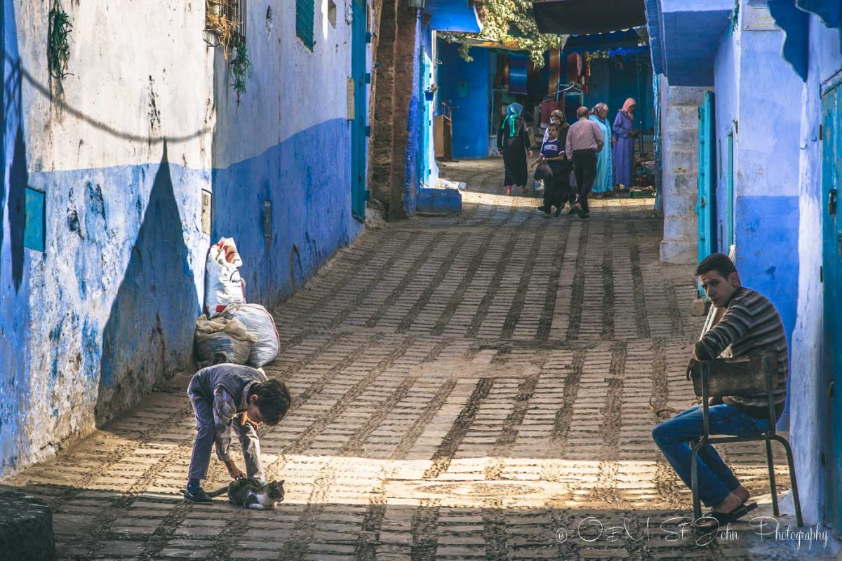 Chefchaouen is full of cats and kids. Morocco
