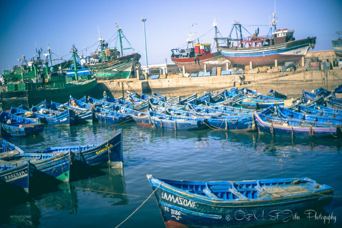 Blue boats lined up in the harbour. Essaouira. Morocco