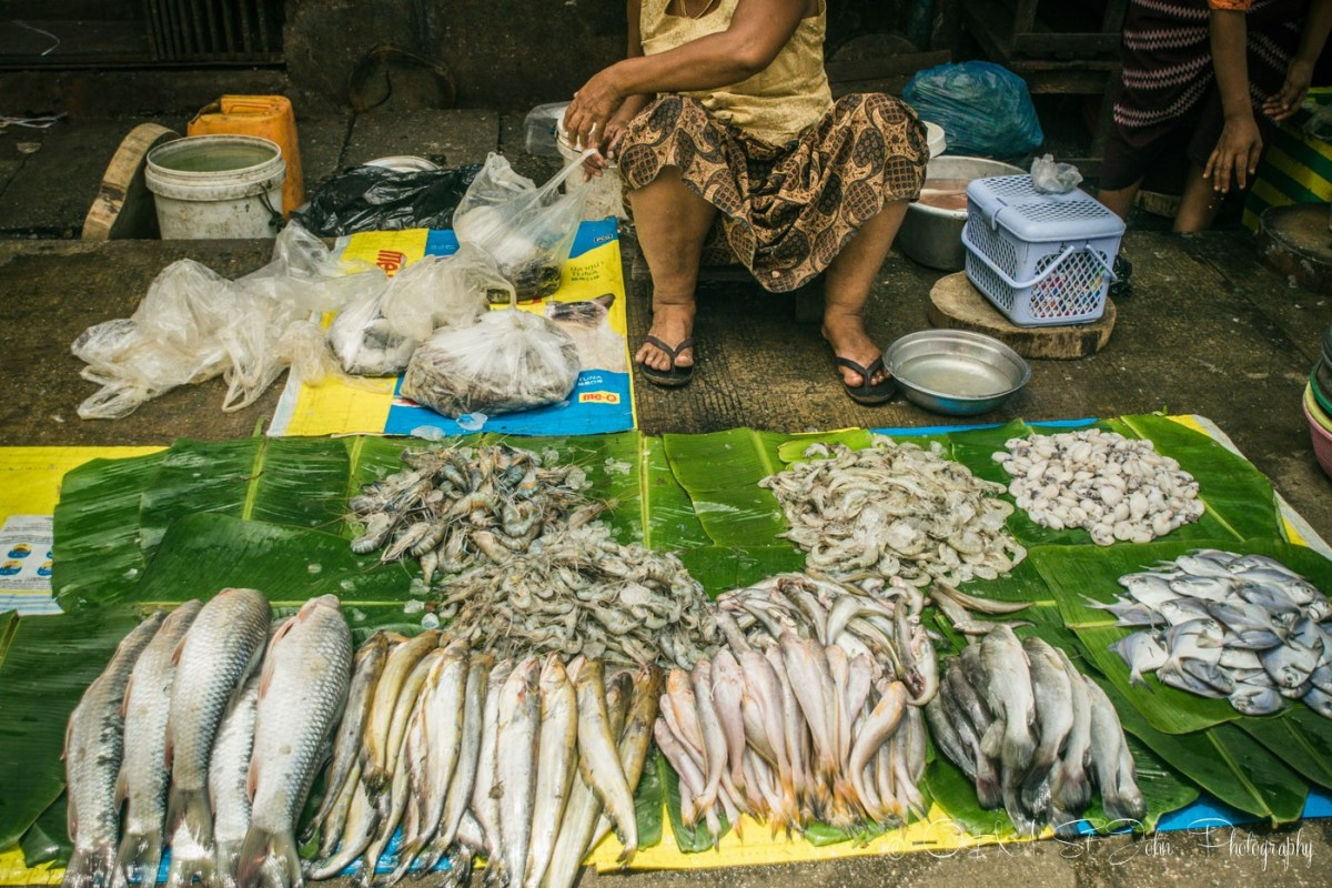 Fish stall in Yangon. Mynamar