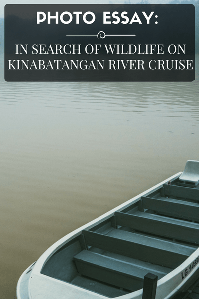 In Search of Wildlife in Kinabatangan River in Sabah, Malaysian Borneo
