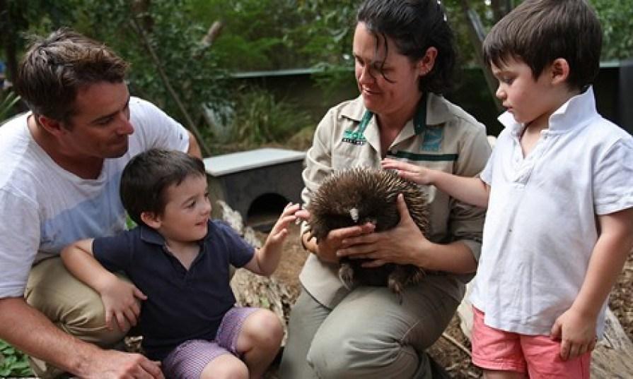 Healesville Sanctuary, Yarra Valley