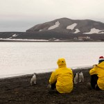 Making friends at Whaler's Bay, Deception Island