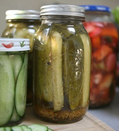 dill pickles by ecokaren