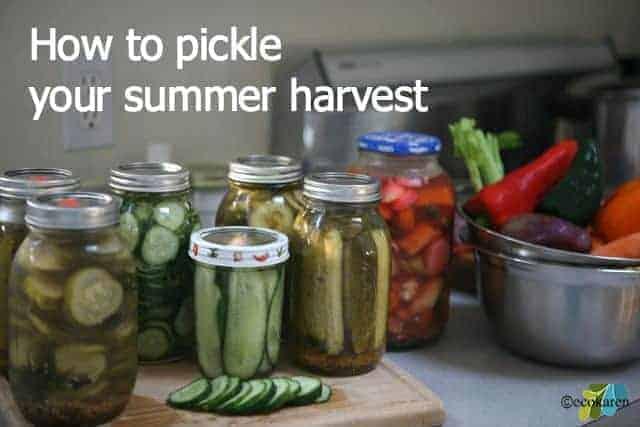 pickle veggies by ecokaren